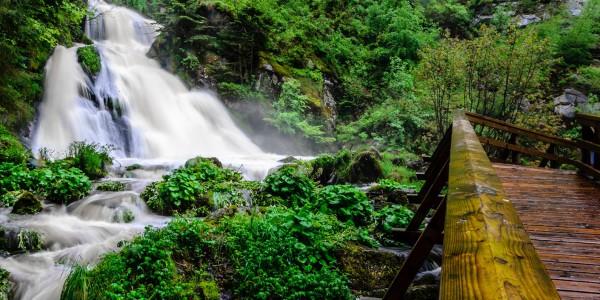 La Forêt-Noire, Allemagne